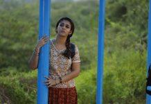 Kolmaavu Kokila Movie Preview - Nayanthara
